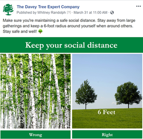 Davey tree social distancing
